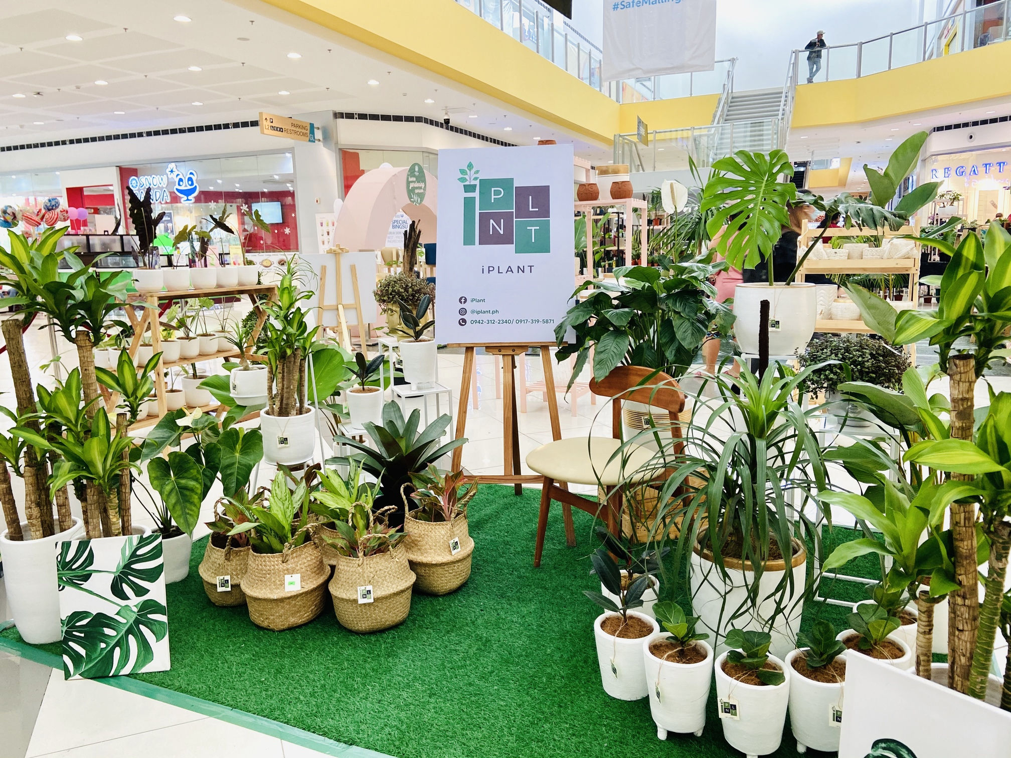 SM Center Pulilan leads help to local growers and plant sellers