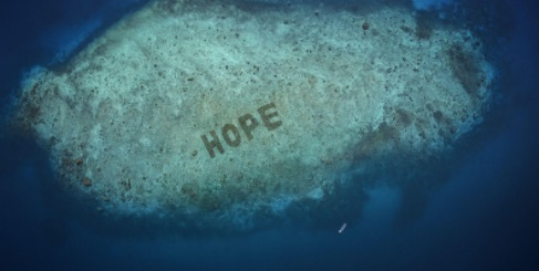 SHEBA, a Mars, Incorporated pet food brand unveils World's Largest Coral Restoration Program: Hope Reef